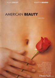 Phim Vẻ Đẹp Mỹ - American Beauty (1999)