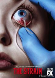 Phim Bệnh Dịch Ma Cà Rồng: Phần 1 - The Strain Season 1 (2014)