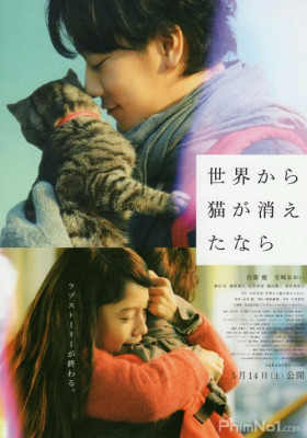Phim Nếu loài mèo biến mất khỏi thế giới - If Cats Disappeared From the World (2016)